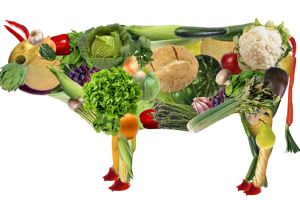 Mucca vegana