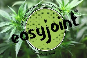Easyjoint-marijuana-legale-in-Italia2
