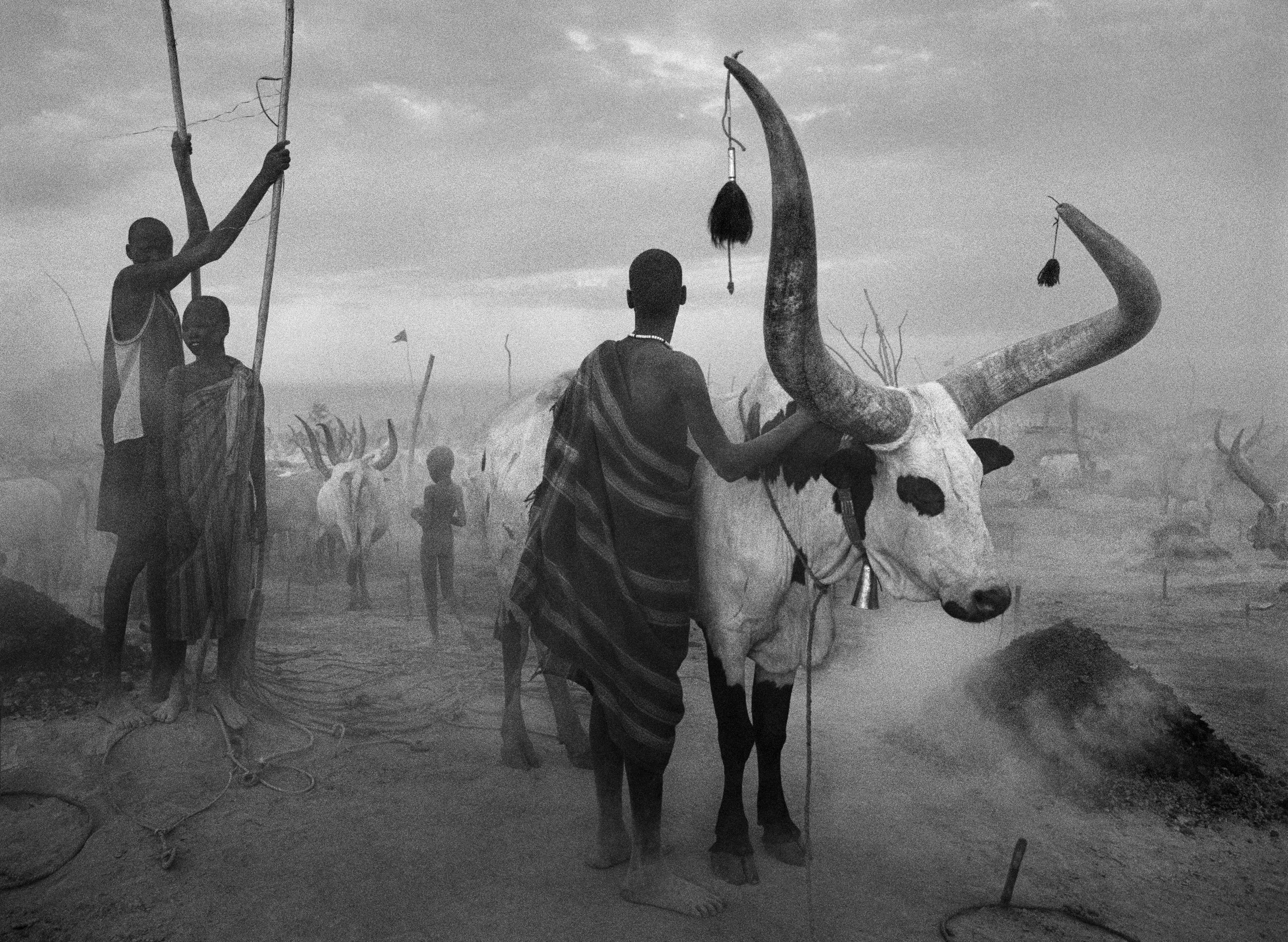 Gruppo Dinka al campo bestiame di Pagarau, Sudan del Sud, 2006 © Sebastião SALGADO